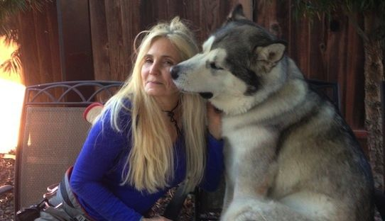 Stacks Image 42