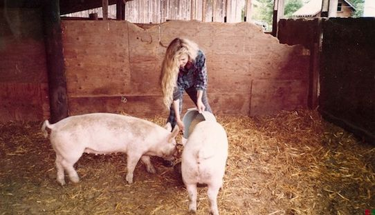Stacks Image 606